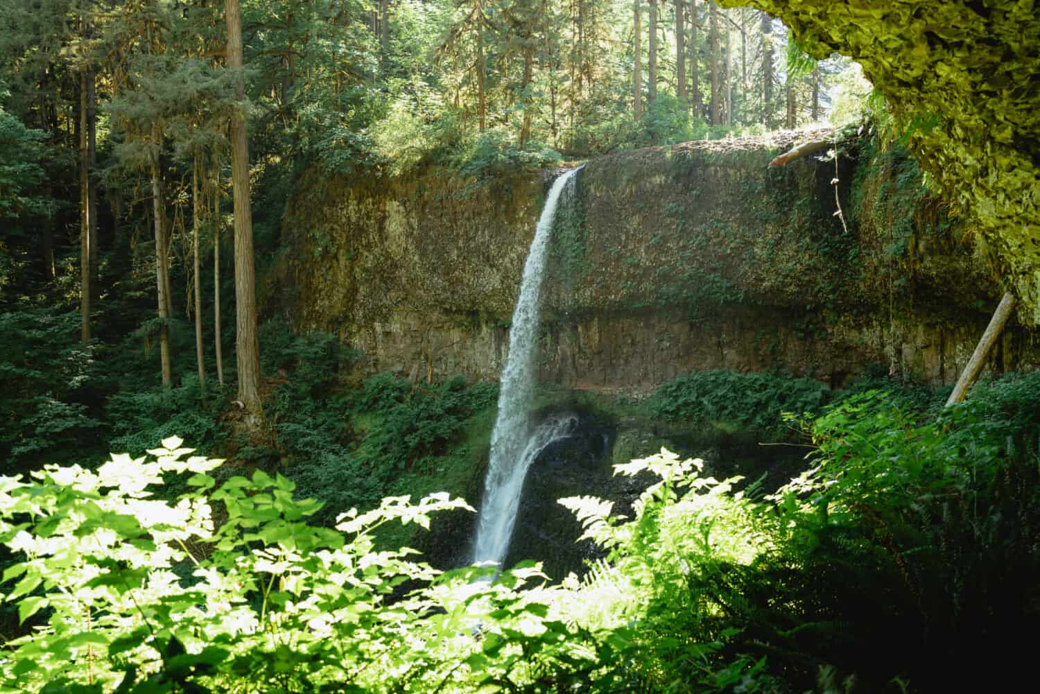 The Trail of Ten Falls - Middle North Falls