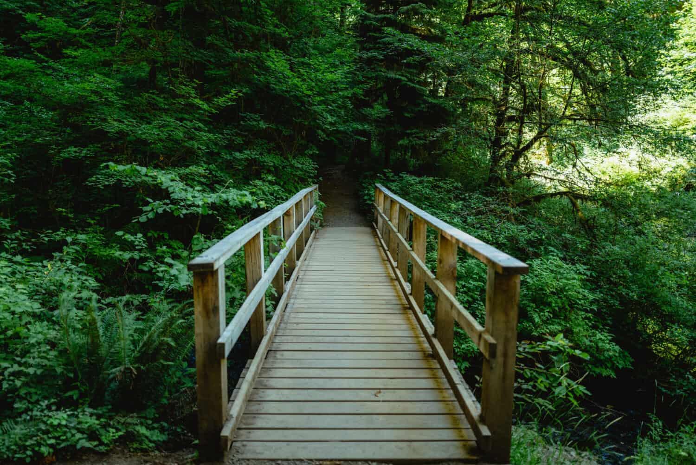 Wooden Bridge on the Trail of Ten Falls, Oregon